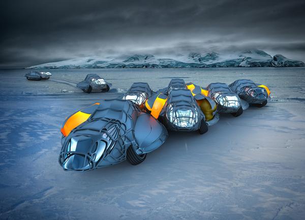 Живой конгломерат во льдах Антарктиды