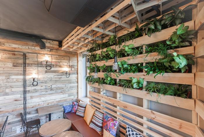 Если хочешь быть в тренде: как выполнить озеленение квартиры